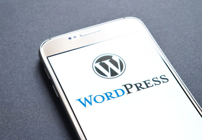 How to Build a Professional Website with WordPress